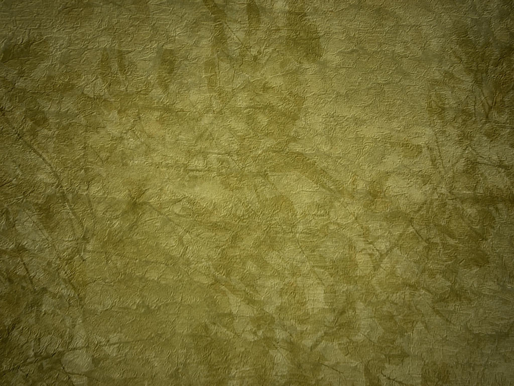 Pressed Leaves Texture 2 by FantasyStock