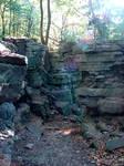 Rocky Forest Background 05