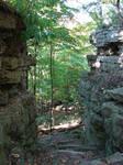 Rocky Forest Background 23