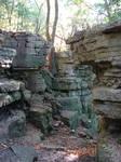 Rocky Forest Background 26