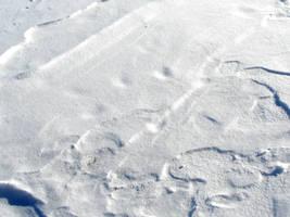 Winter Snow Drift Texture 3 by FantasyStock