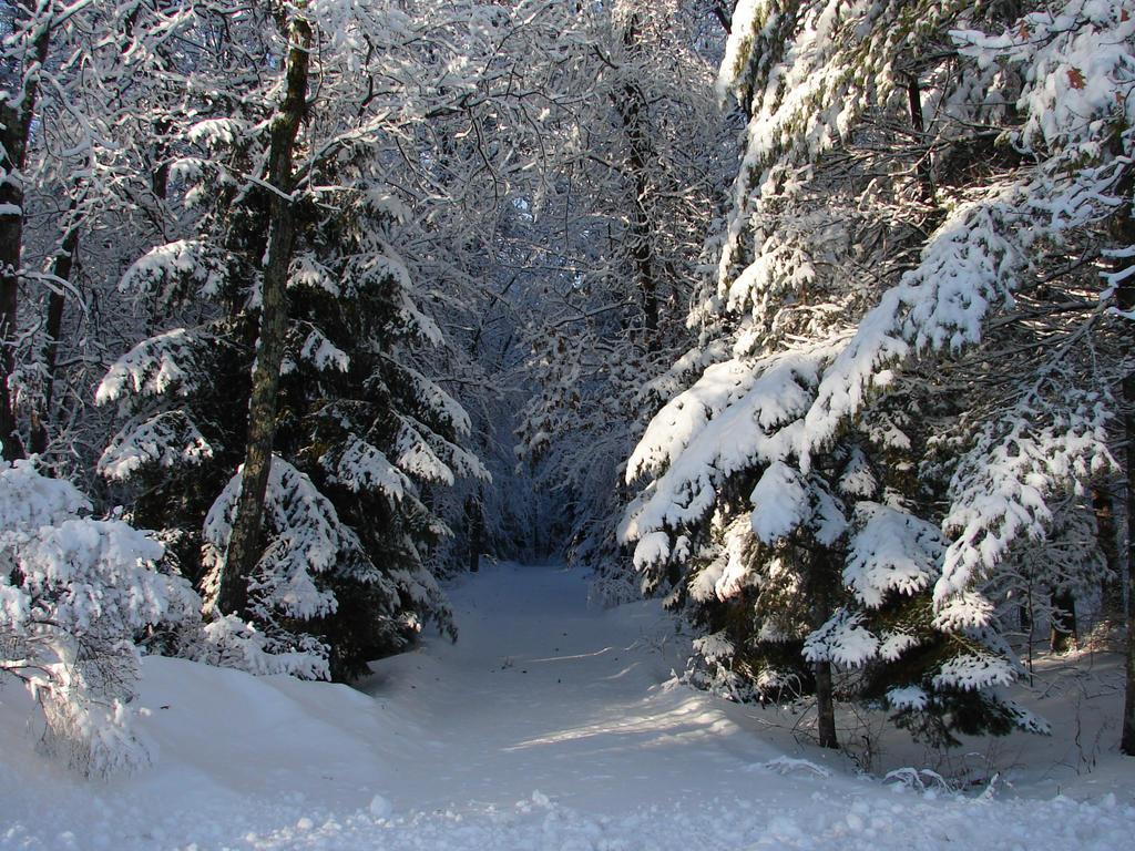 snow landscape backgrounds - photo #26