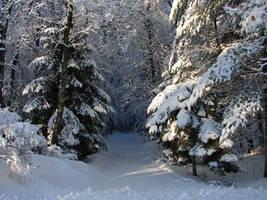 Snowy Landscape Background 05 by FantasyStock