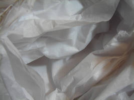 Tissue Paper Texture 3 by FantasyStock