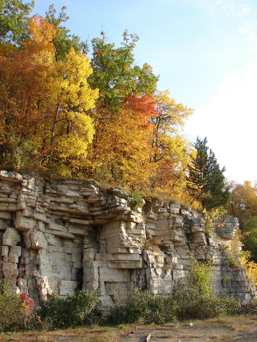 Autumn Cliff Stock Scenery 17 by FantasyStock