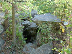 Rocky Forest Background 34