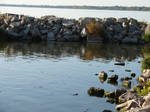 Rocky Lake Shore 1