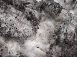 Black Polluted Snow by FantasyStock