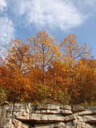 Autumn Cliff Stock Scenery 21 by FantasyStock