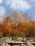 Autumn Cliff Stock Scenery 21