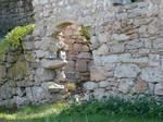 Mysterious Archway Door 2