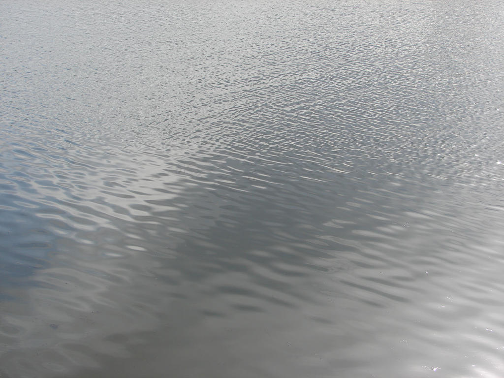 calm water texture in pond water texture amazing wallpapers