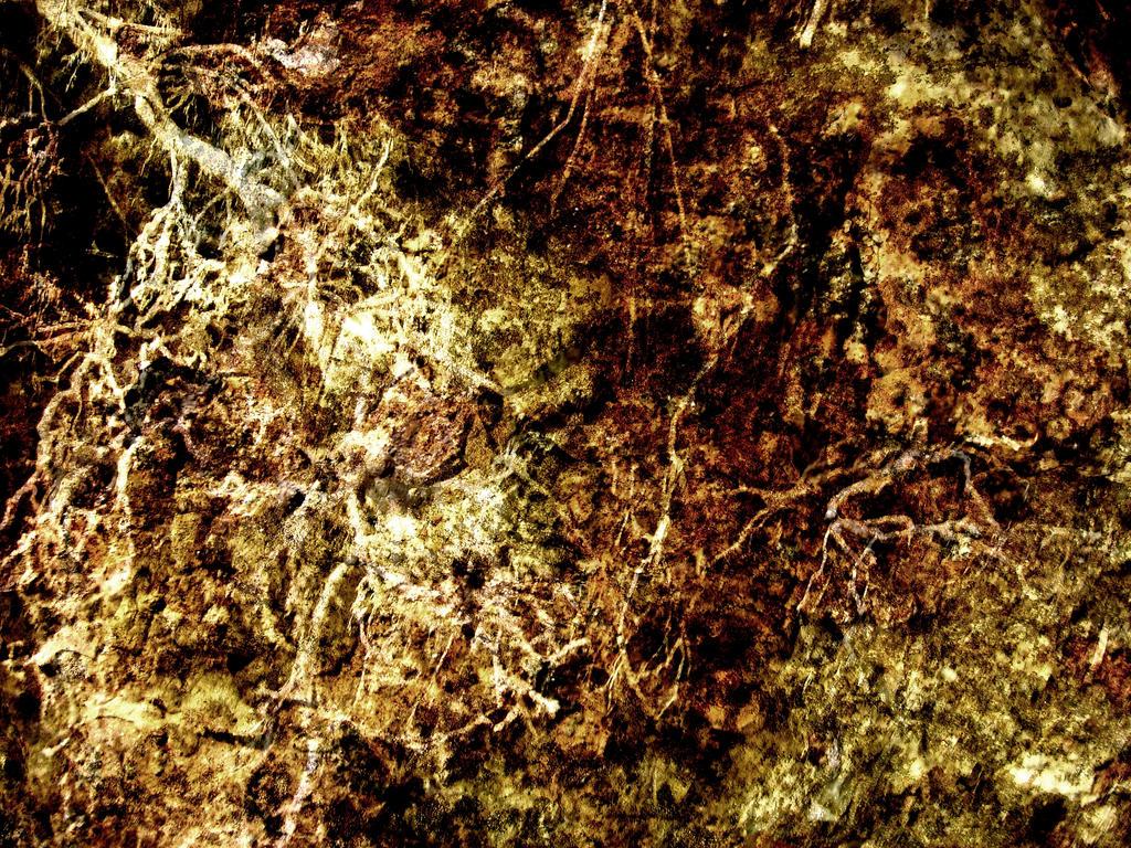 Entropy Texture