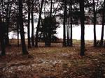 Frozen Legend Lake