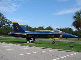 Blue Angels Parking 6