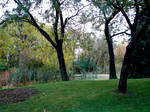 Fall Background Landscape 2
