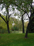 Fall Background Landscape 3
