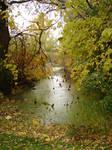 Fall Background Landscape 4