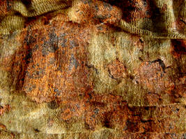Rusty Fabric Texture by FantasyStock