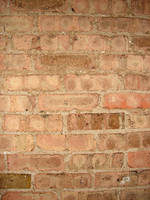 Brick Wall Texture 3 by FantasyStock