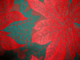 Poinsettia Christmas Pattern 4 by FantasyStock