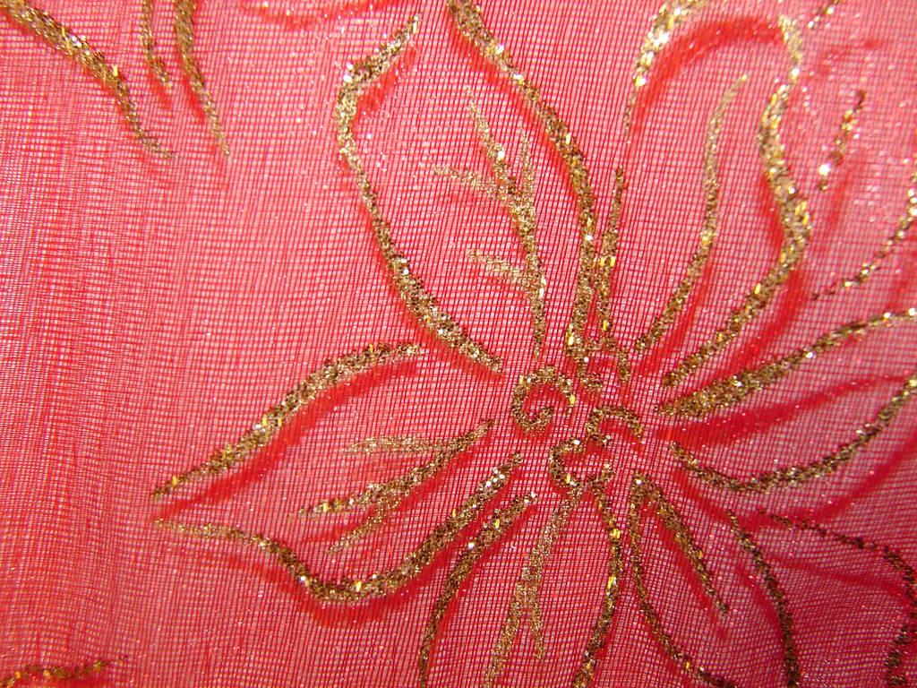 Poinsettia Christmas Pattern 5 by FantasyStock