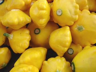 Yellow Cucurbita Pepo Squash by FantasyStock