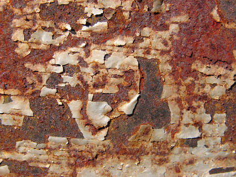 Metal Rust Texture 42