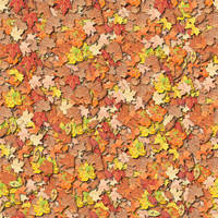 I think it's a seamless leaf texture