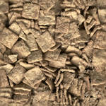 Seamless Cereal Tiled Texture
