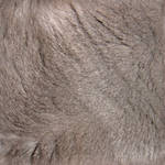 Seamless Chartreux Fur Texture