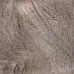 Seamless Chartreux Fur Texture