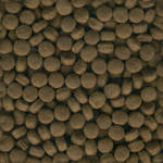 Seamless Dog Food Texture Tile