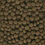 Seamless Dog Food Texture Tile