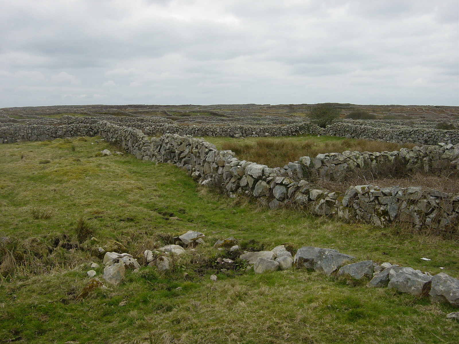 County Galway Stone Walls 2 by FantasyStock