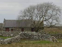 County Galway Stone Walls 4 by FantasyStock