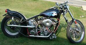 Harley-Davidson Hog Motorcycle