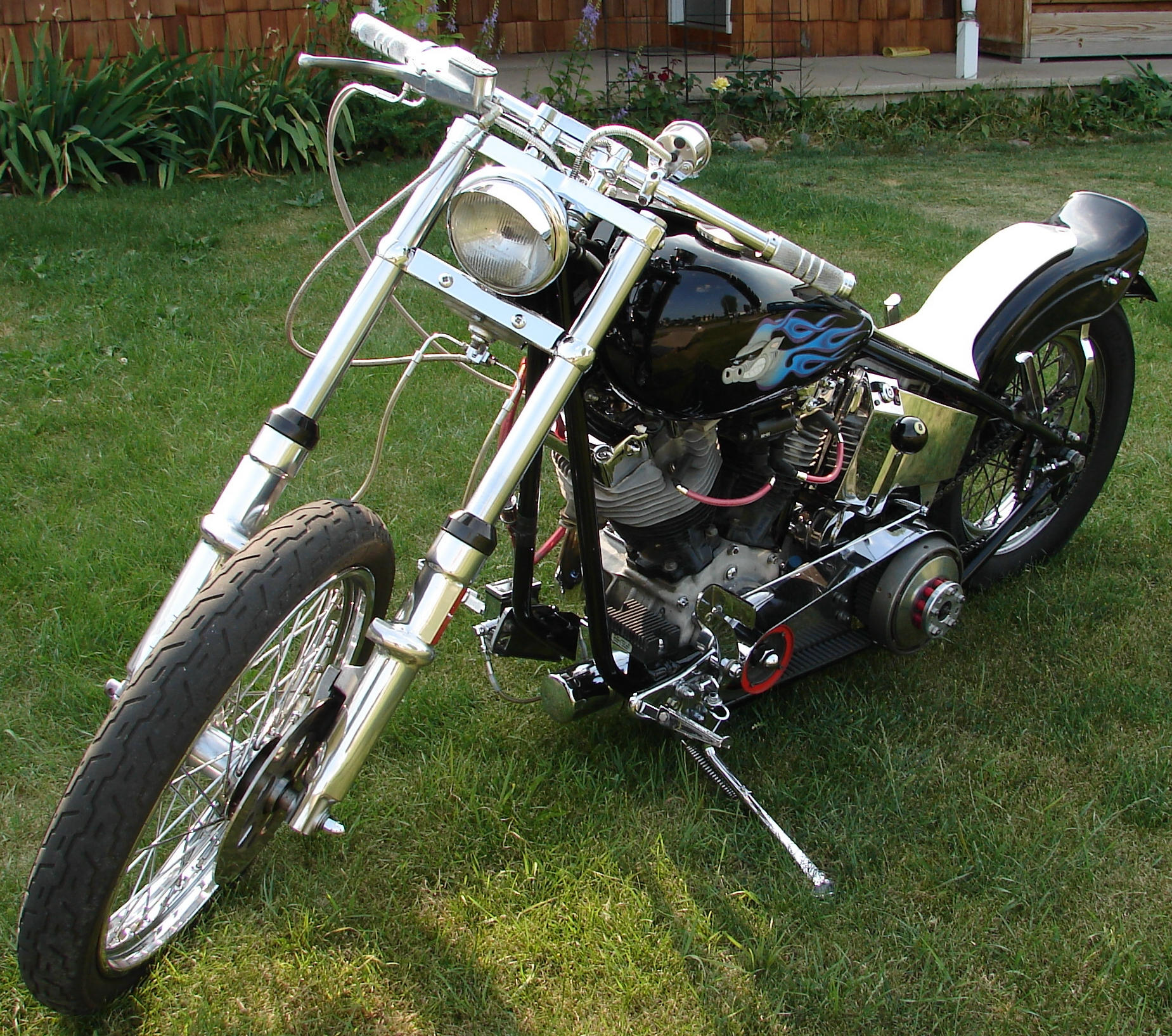 Hog Harley-Davidson Motorcycle by FantasyStock