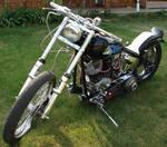 Hog Harley-Davidson Motorcycle