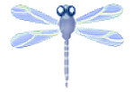 Blue Dragonfly PNG Clipart by FantasyStock