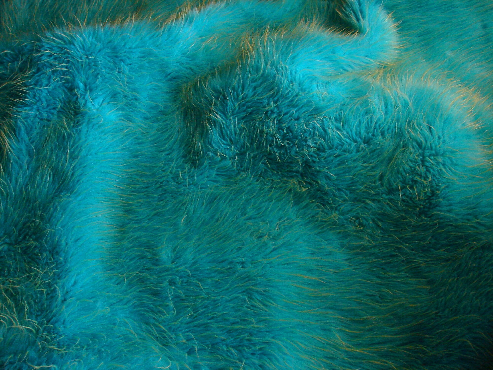 Blue and Green Fur Texture 1 by FantasyStock