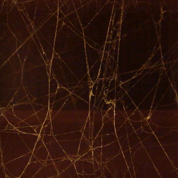 Seamless Spiderweb Texture by FantasyStock on DeviantArt