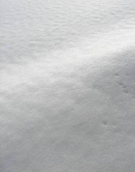 Winter Icy Snow Texture 1 by FantasyStock