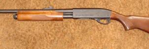 20 Gauge Pump Shotgun