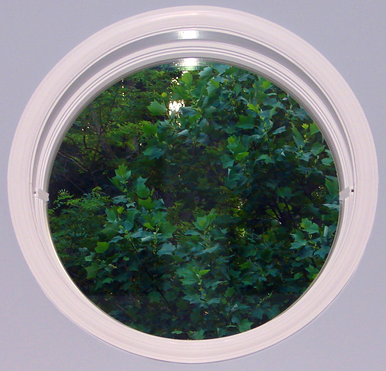Round Window Into the Forest by FantasyStock