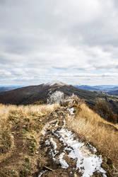 Autumn Trail 3