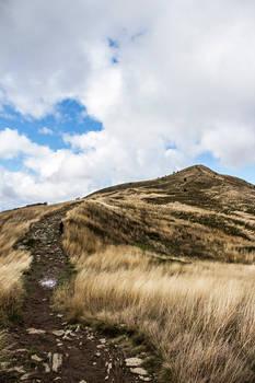 Autumn Trail 7