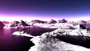 In the evening on the Antarctic