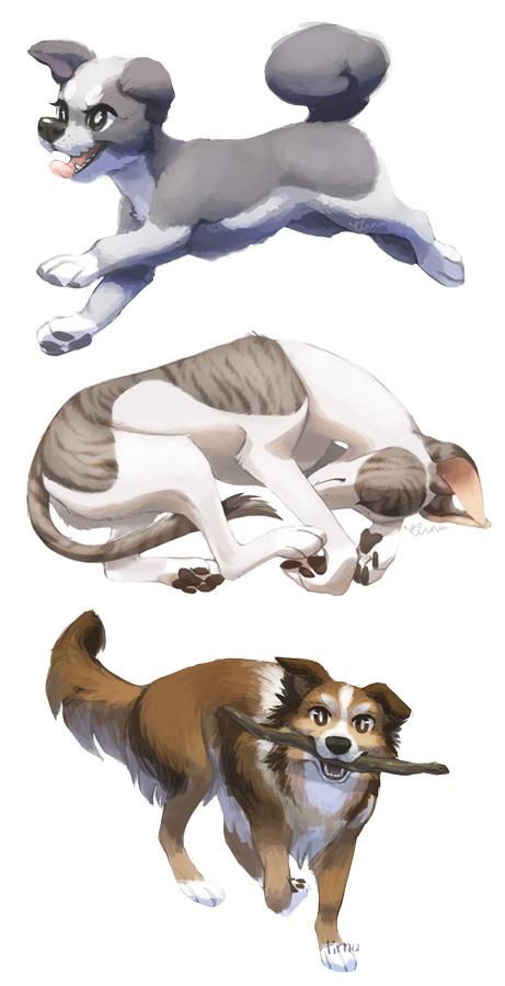 doggers