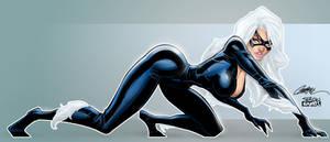 Black Cat 02